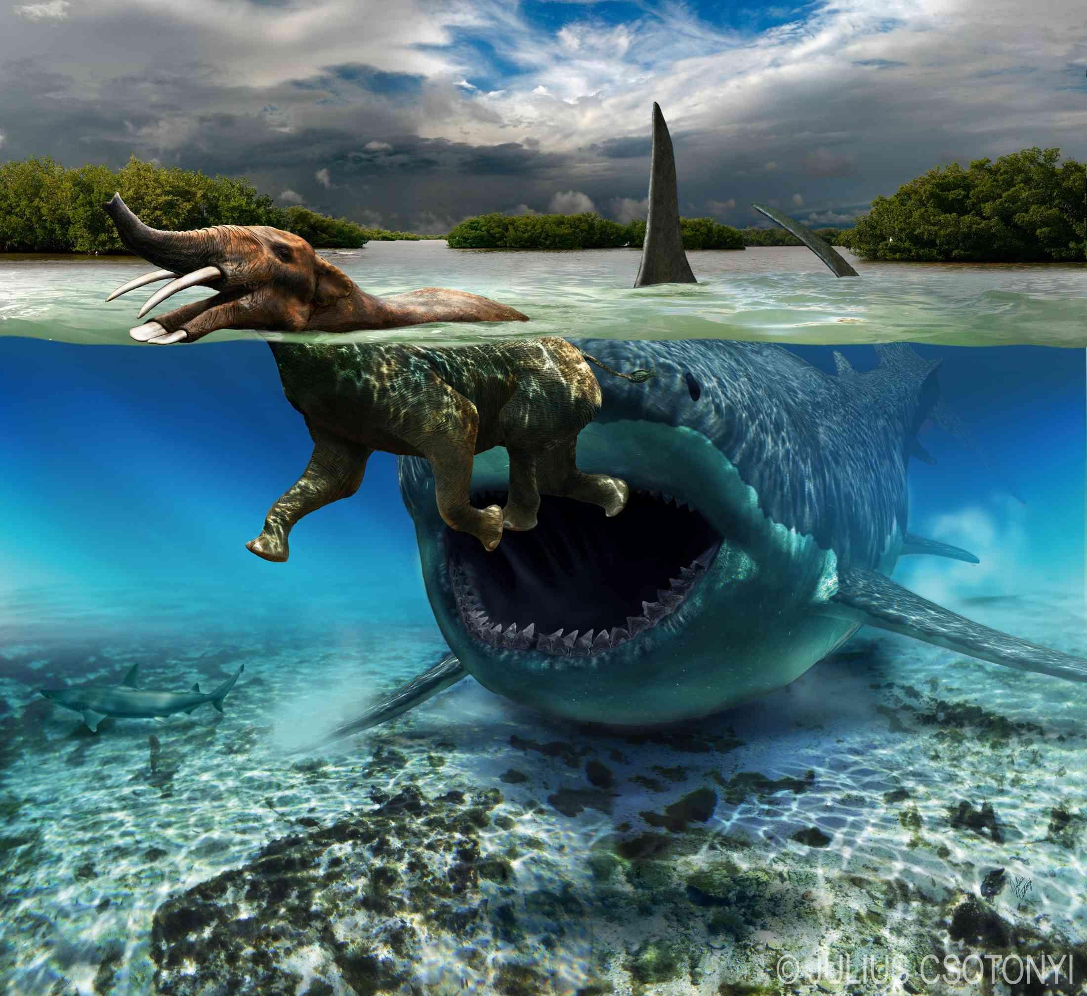 κόκαλο δεινόσαυρος που χρονολογείται Συνδέστε το tablet με το αυτοκίνητο