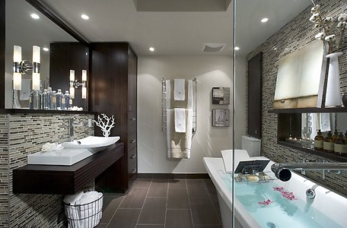 Amazing_Bathroom_3 (1)